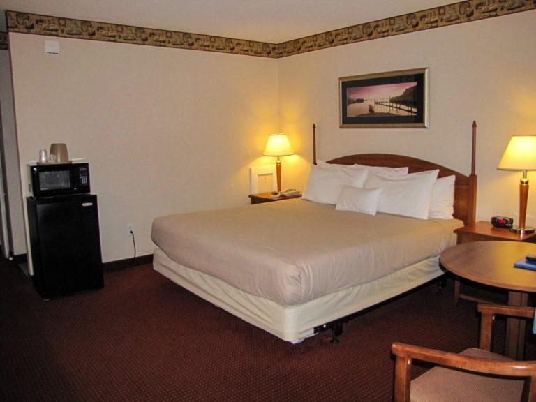 Pet Friendly King Room at Flagship Inn microwave fridge