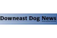 downeast-dog