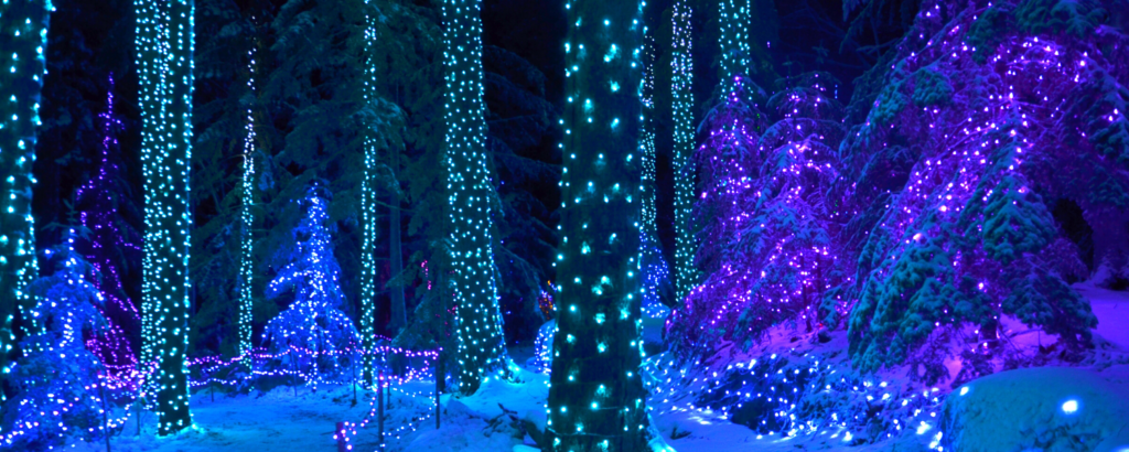 Gardens Aglow Trees - Things You Need to Know About Gardens Aglow in Boothbay Harbor