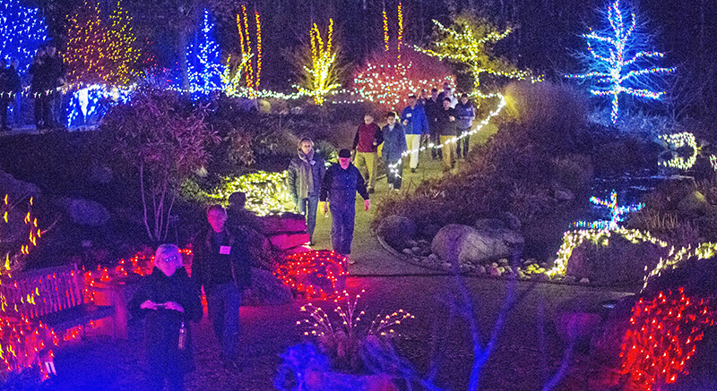Gardens Aglow Maine light event - people walking through the light display winter