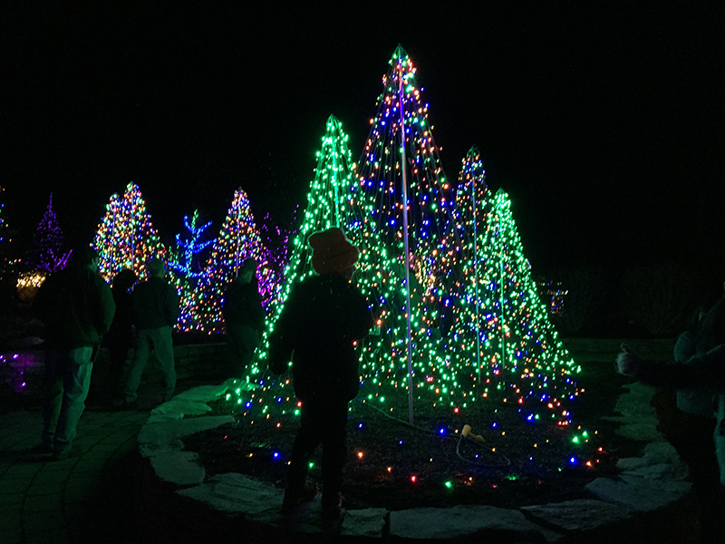 tips for gardens aglow at coastal maine botanical gardens in boothbay harbor
