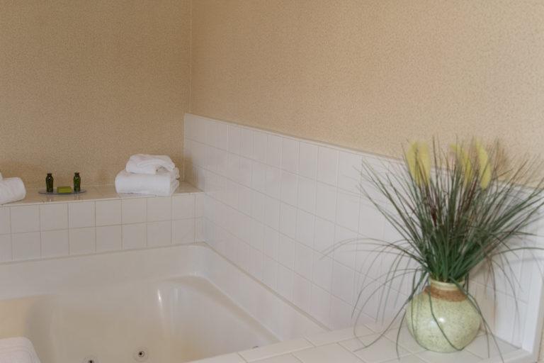 room-queen-jacuzzi-plant