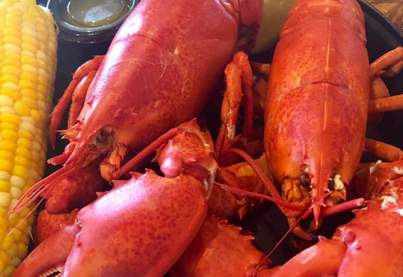 the best Boothbay Harbor restaurants that are local and unique - Boothbay Harbor Maine
