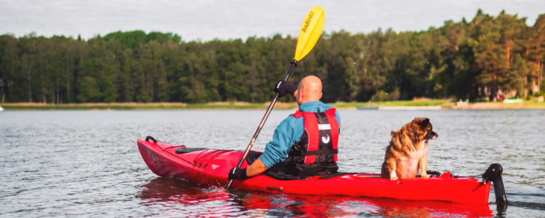 pet-friendly things to do in Boothbay Harbor Maine