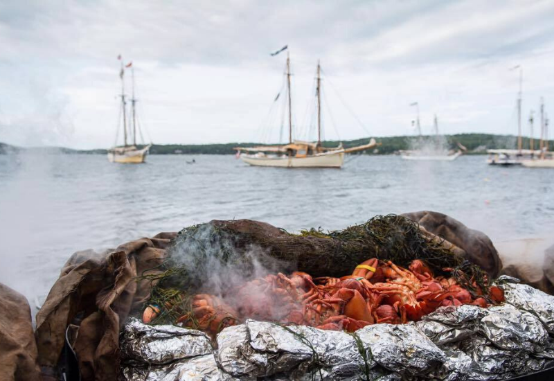 beach lobster dinner with boat tour in boothbay harbor maine